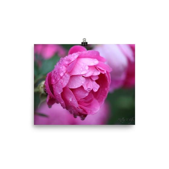 Image of Flower 17