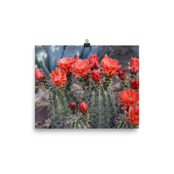 Image of Flower 15