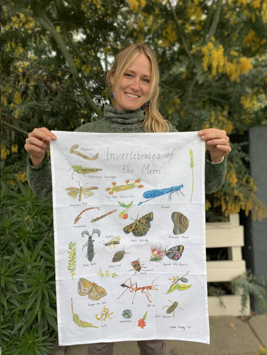 Image of  Invertebrates of the Merri Creek - A Tea Towel