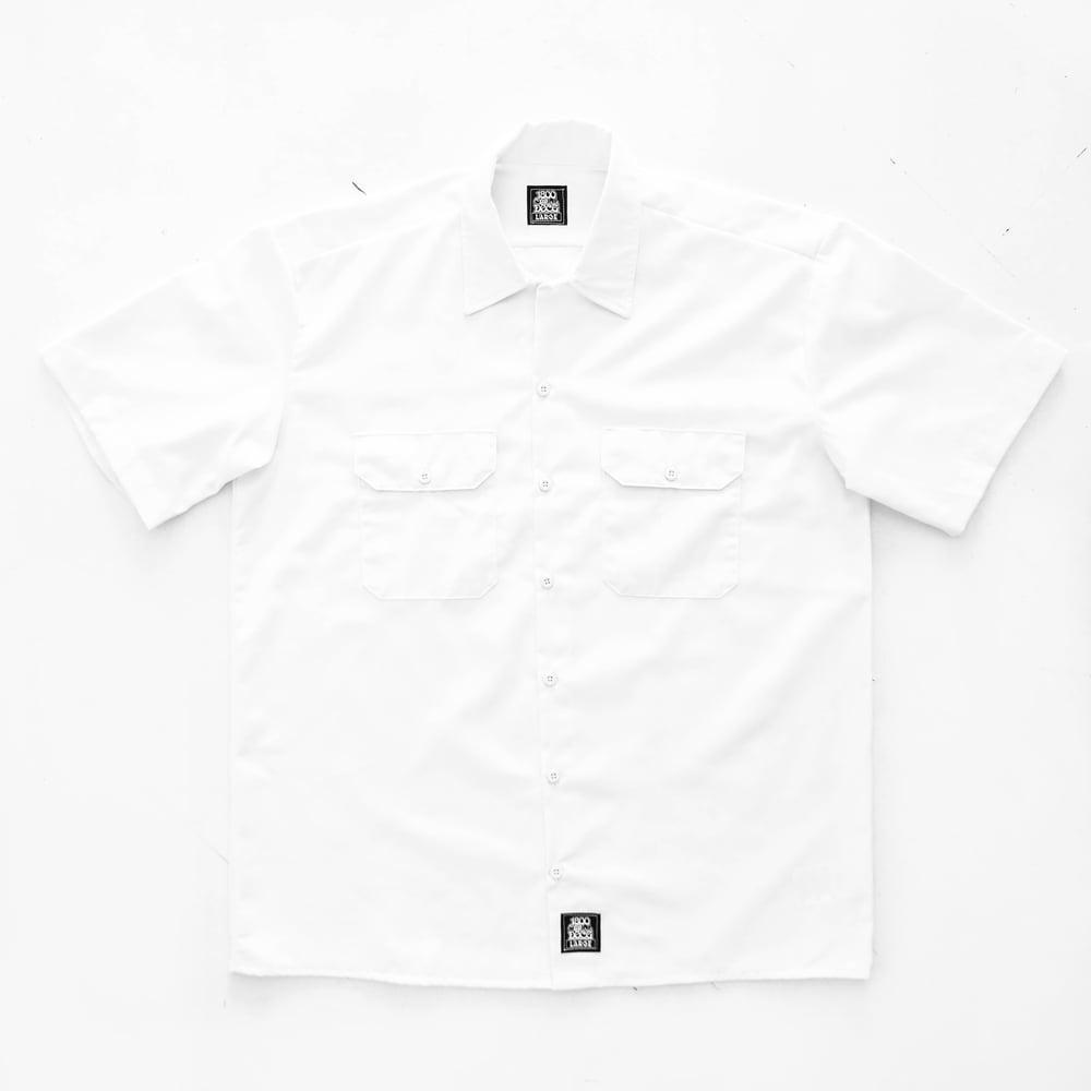 Image of docg workwear SHIRTS (White)