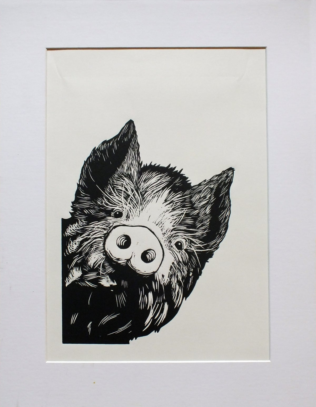 Image of 'Curious Pig' linocut, limited edition