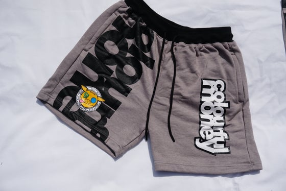 Image of Colourfulmoney Camo Effect Shorts