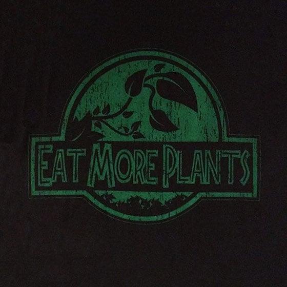 Image of Jurassic Plants