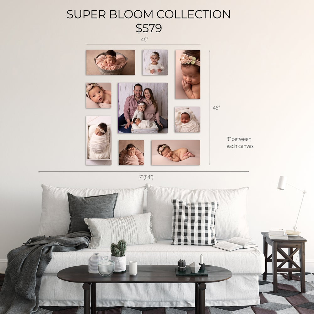 Image of SUPER BLOOM CANVAS COLLECTION