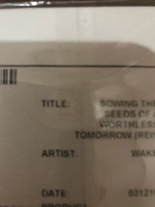 Image of WAKE - SOWONG THE SEEDS OF A WORTHLESS TOMORROW TEST PRESS