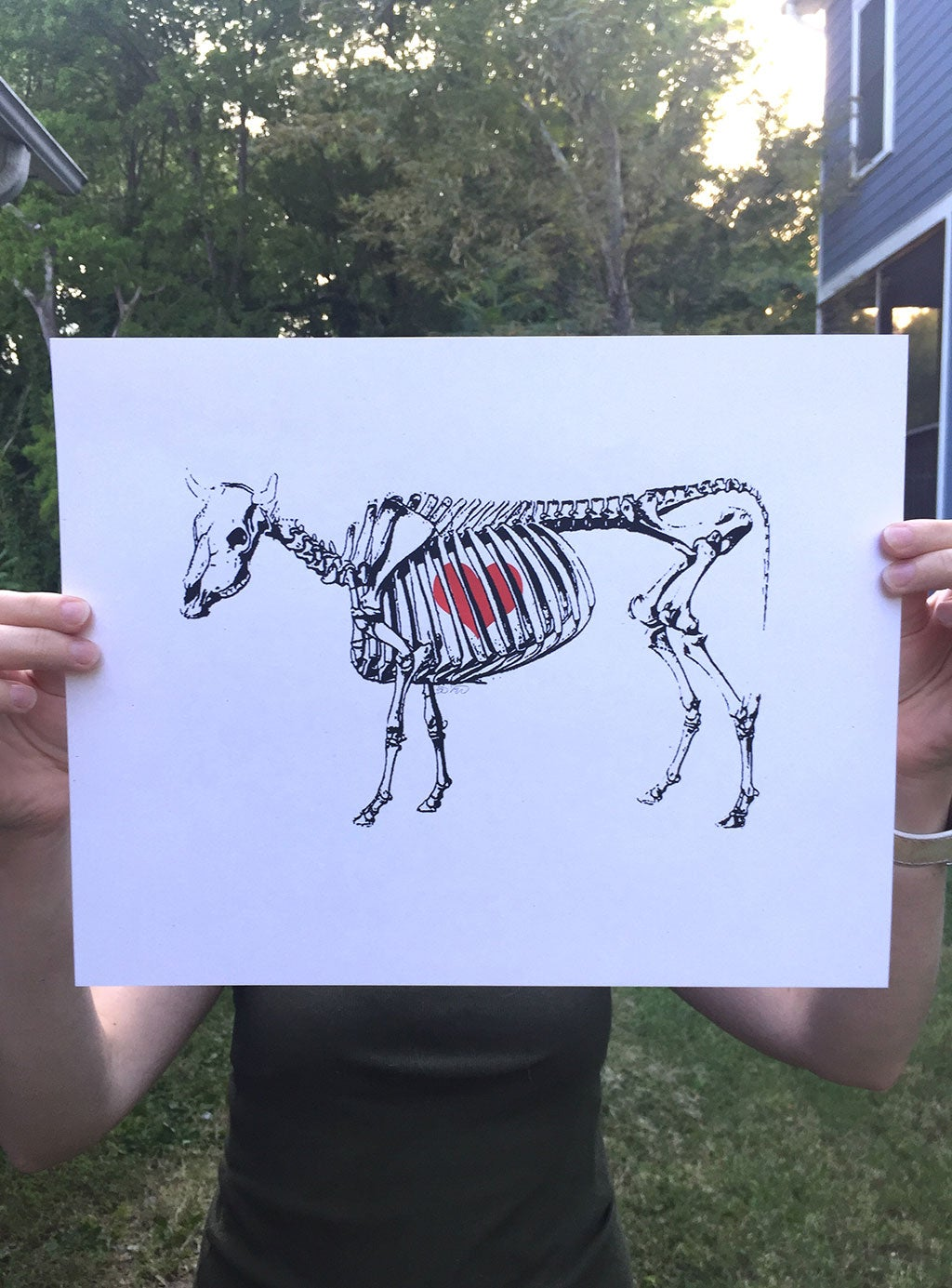 Image of The Bones You're Built On