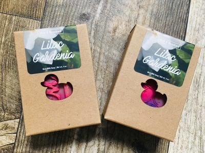 Image of Lilac Gardenia