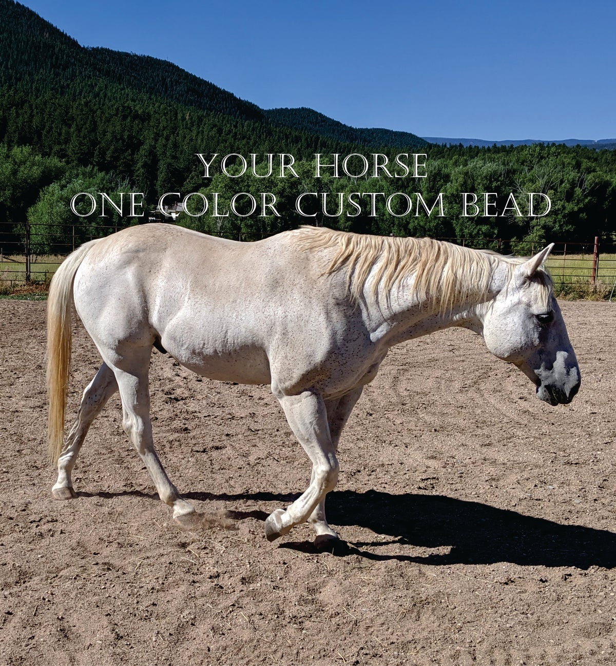 Image of Custom Glass Horse Bead - single color