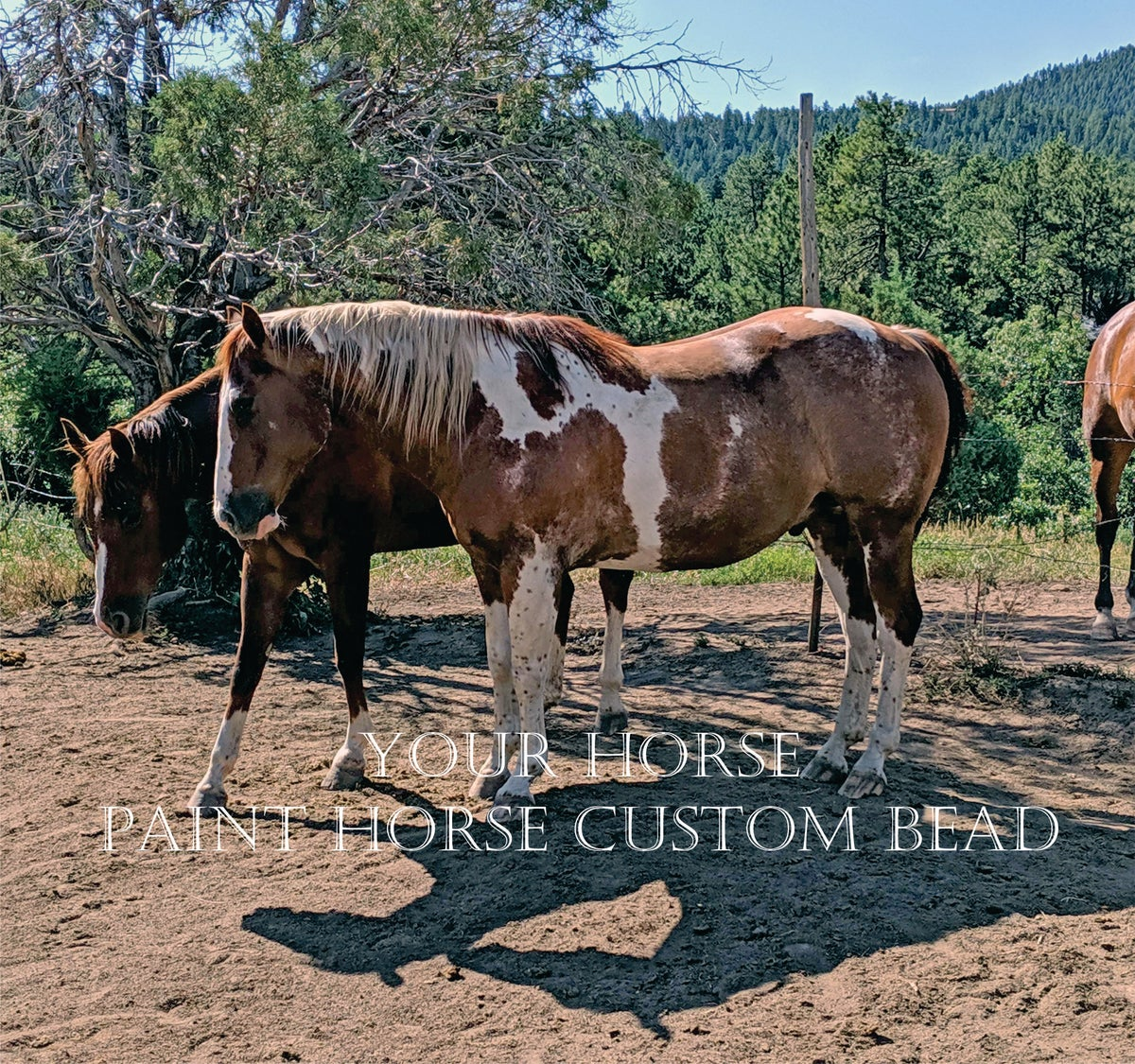 Image of Custom Glass Horse Bead - Paint