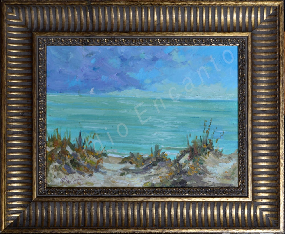 Image of Beach at IRB by Violetta Chandler
