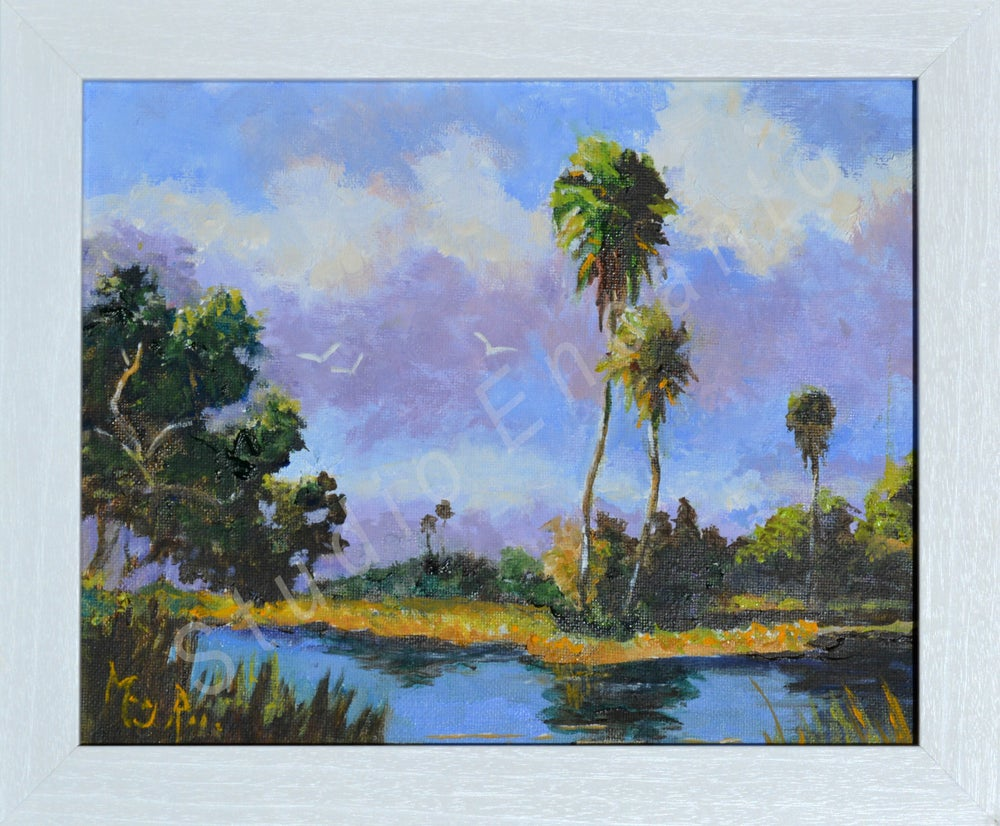 Image of Inland Florida by Mary Rose Holmes