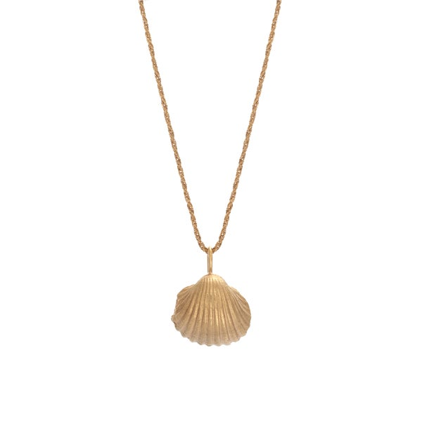 Image of Big Shell Necklace Gold