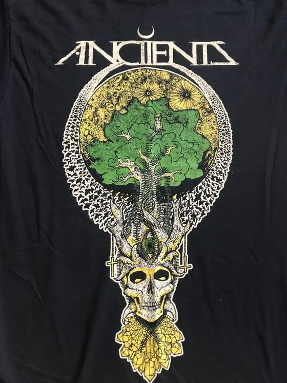 Image of Tree skull