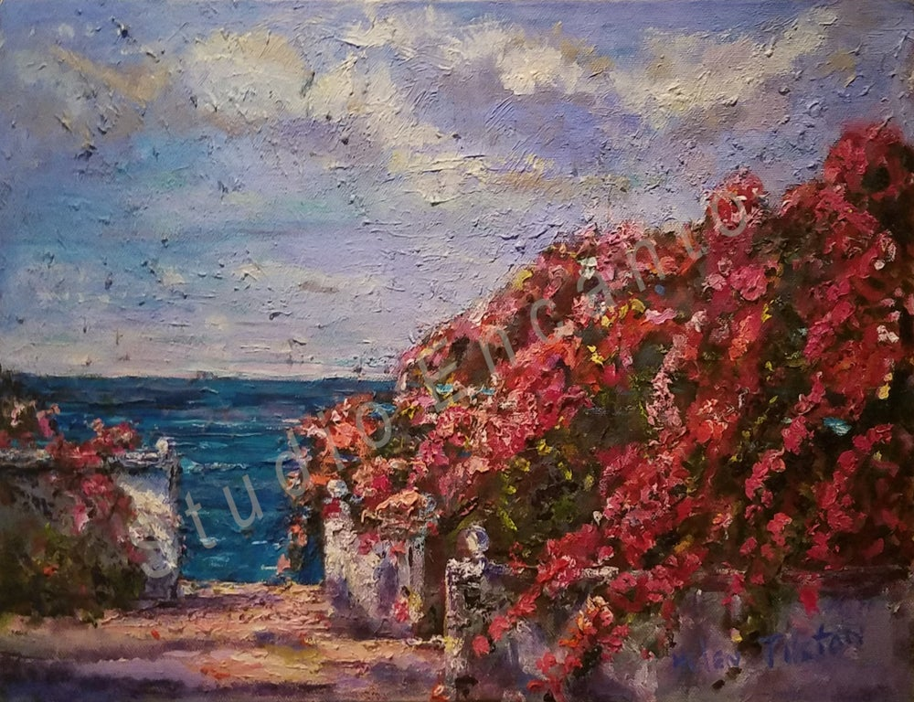 Image of Bouganvilla Bloom by Helen Tilston
