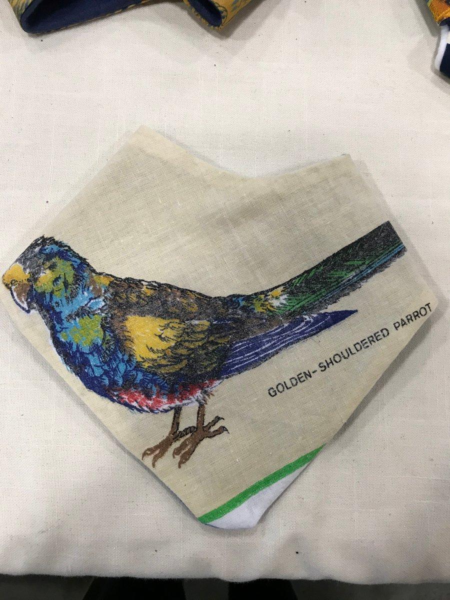 Image of Golden Shoulder Parrot Bandana - Envy Recycled Range