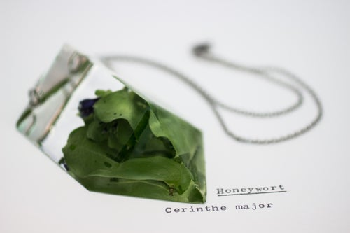 Image of Honeywort (Cerinthe major) - Chunky Statement Piece #2