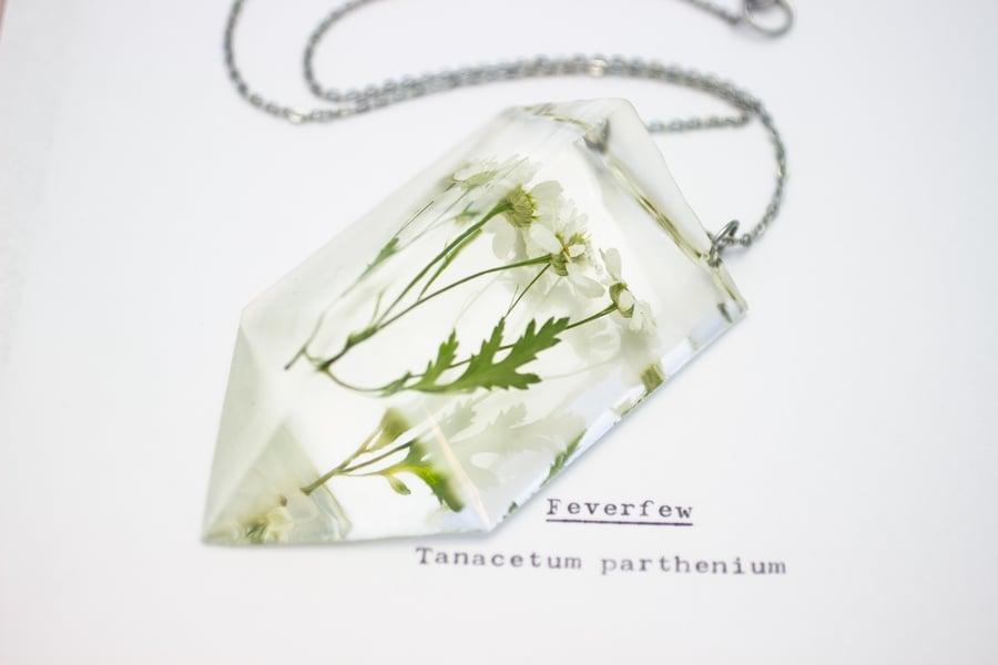Image of Feverfew (Tanacetum parthenium) - Chunky Statement Piece #1