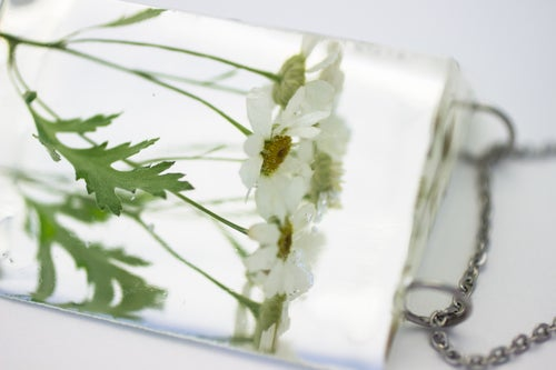 Image of Feverfew (Tanacetum parthenium) - Chunky Statement Piece #1