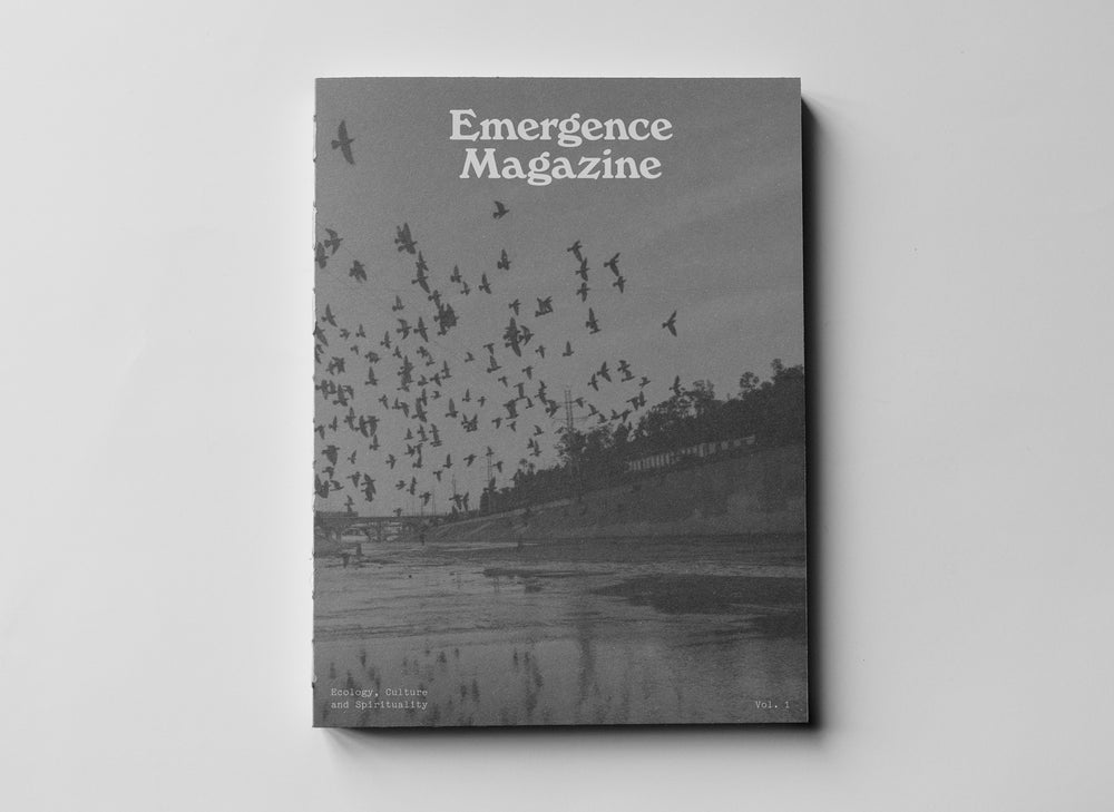Image of Emergence Magazine Volume 1