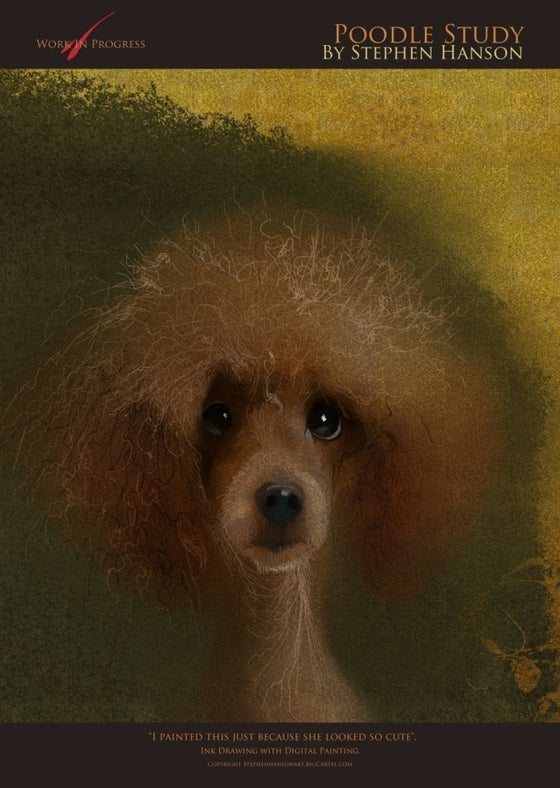 Image of Poodle Study