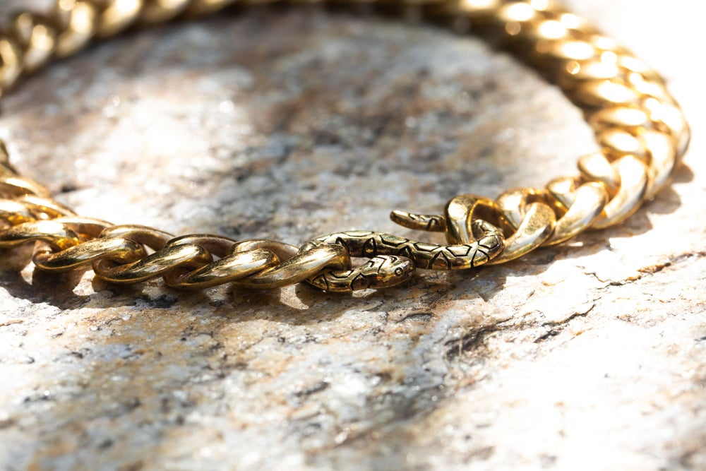Image of Curb Chain with Snake Clasp