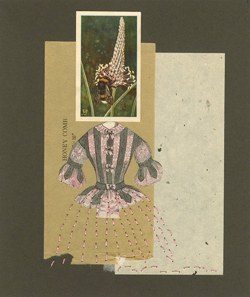 Image of She had a bee in her bonnet. Original collage.