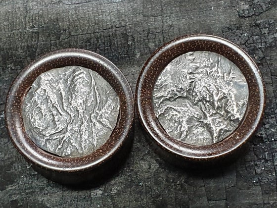 Image of 24mm Reticulated silver plugs