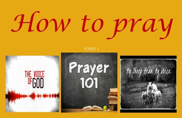 Image of Praying 101 Series DVD