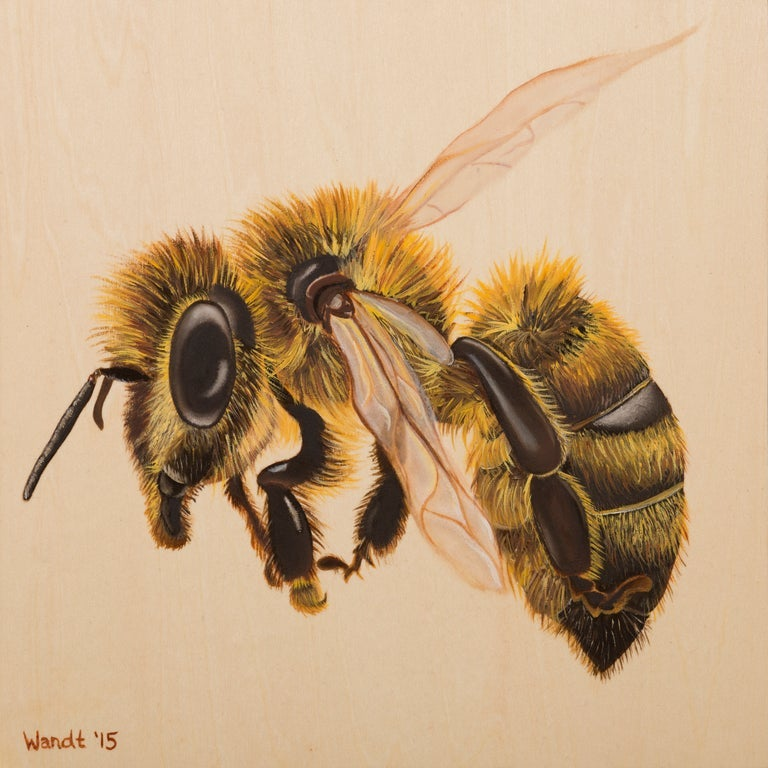 Image of The Hive - Giclèe Bee Prints