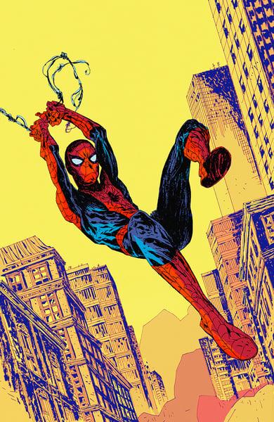 Image of Spider-Man 13x19
