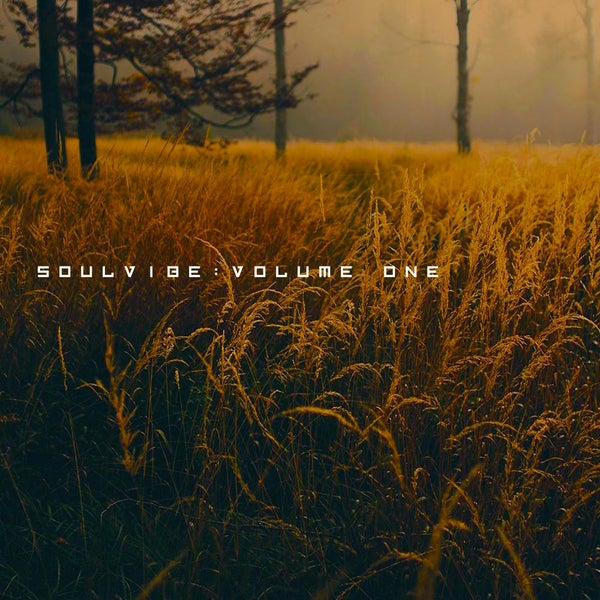 Image of Soulvibe Vol.1