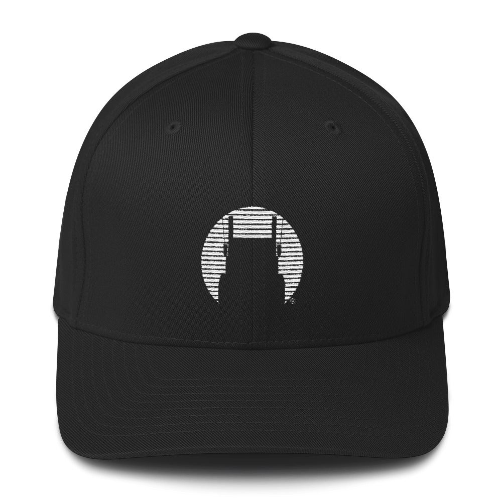 Image of D Brand Icon FlexFit Hat