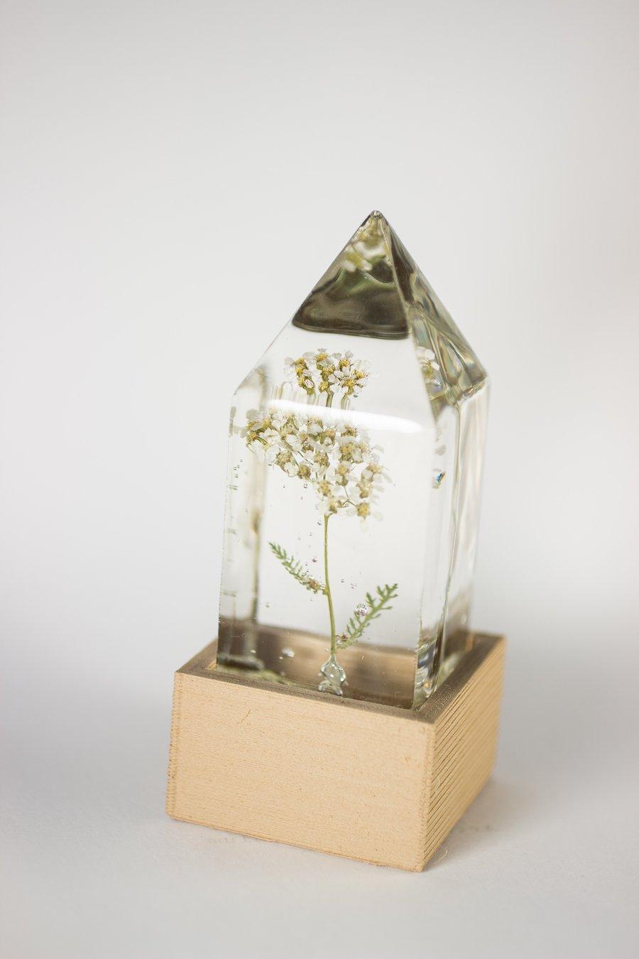 Image of Yarrow (Achillea millefolium) - Floral Prism Light #1