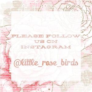 Image of Luxury Blush Pink & White Rose Headband - 7 Rose