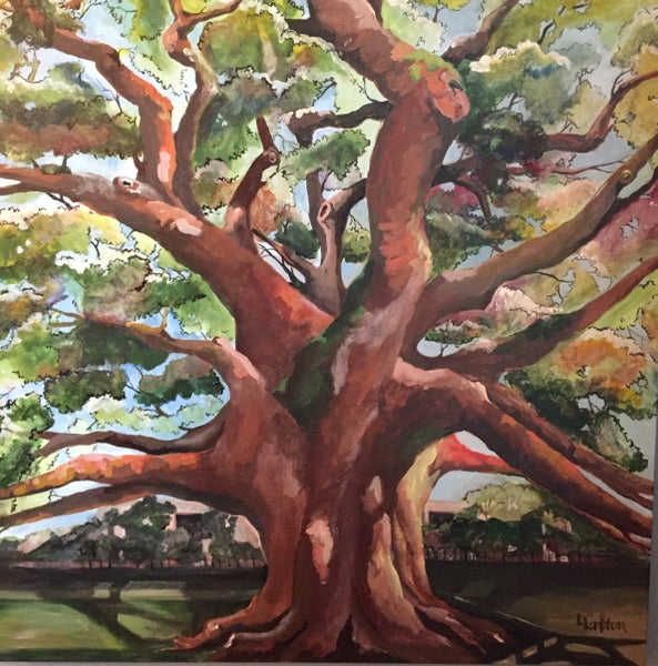 Image of LL002 Treaty Oak Original Acrylic