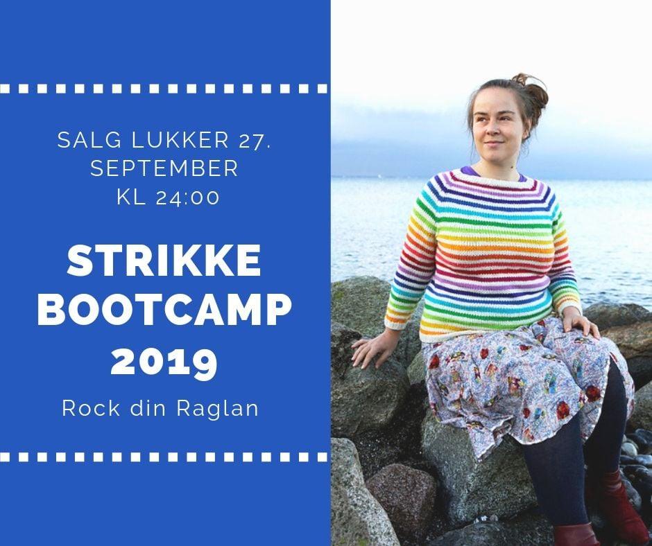 Image of Strikke Bootcamp 2019 Rock din Raglan