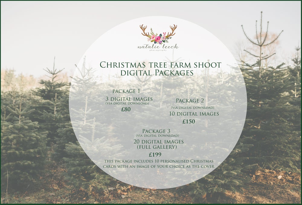 Image of Christmas Tree Farm Mini Shoots