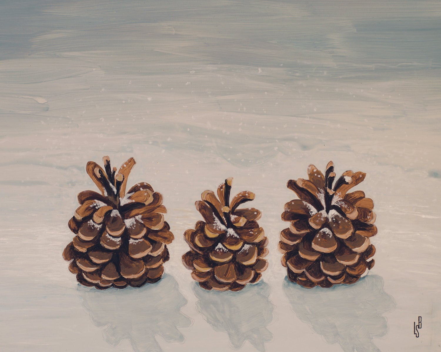Image of Family of pinecones