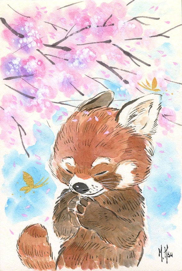 Image of Red Panda Cherry Blossoms - Prints