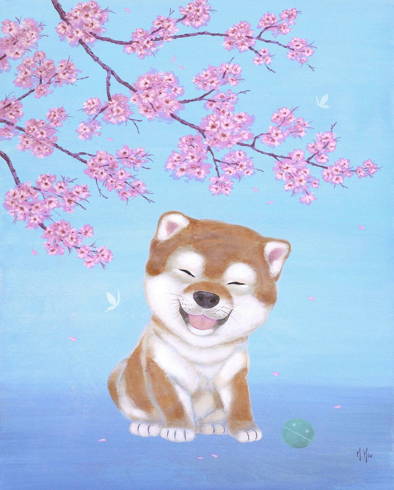 Image of Shiba and Cherry Blossoms - Prints