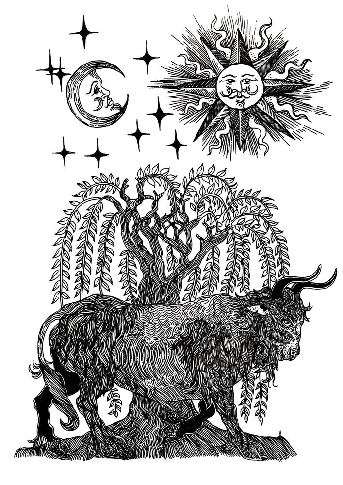 Image of The ox and the willow. Sun and the moon.