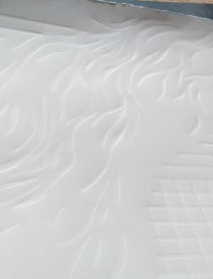 Image of Braided River II - Fragile Systems Series