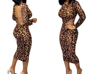 Image of Leopard Backless Bodycon