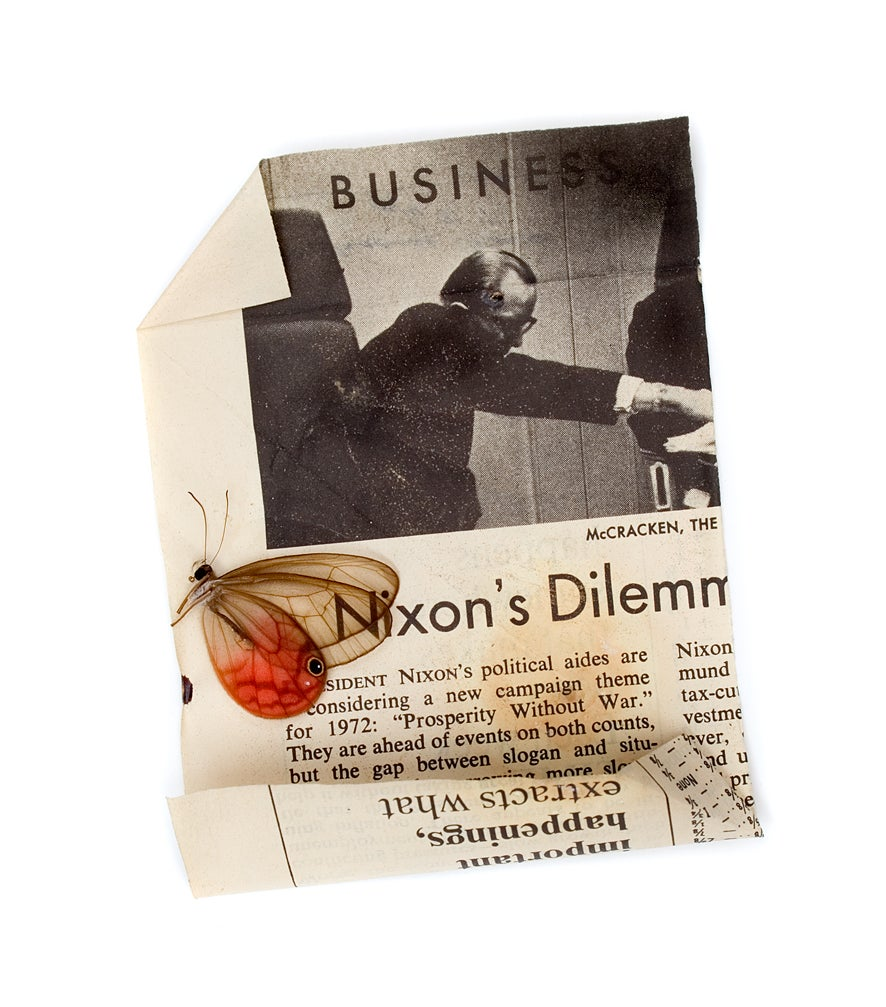 "Image of The Butterfly Hunter Book & Limited Edition Print ""Nixon's Dilemma"""