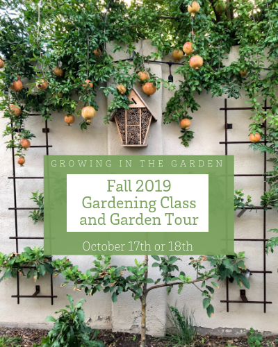Image of Fall 2019 Gardening Class and Garden Tour