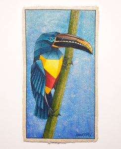 "Image of ""Aracari"" original watercolour study"