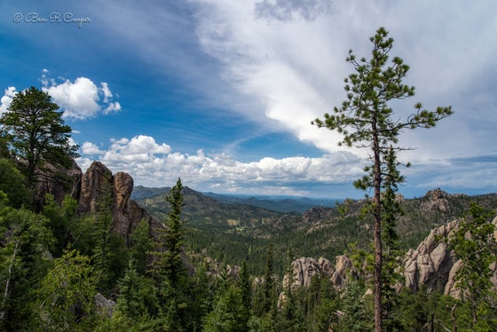 Image of Black Hills View