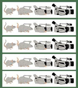 Image of Evolution of a VX1000 Sticker Pack (5)