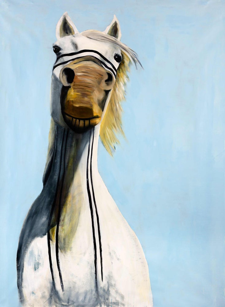 Image of Wild horse