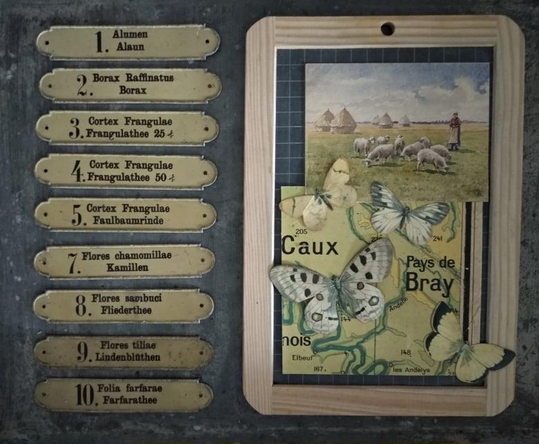 Image of Rares anciennes plaques d'herboriste numérotées en tôle peinte lithographiée